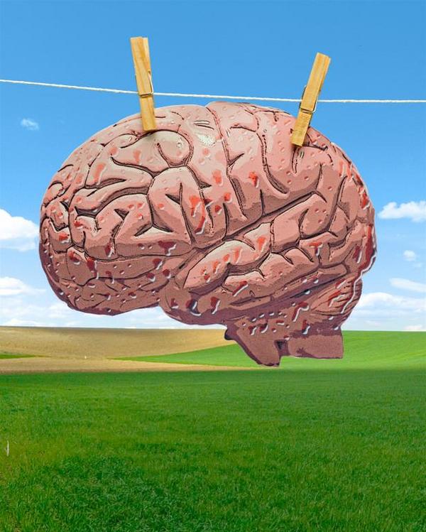 Billedresultat for billeder af hjernevask